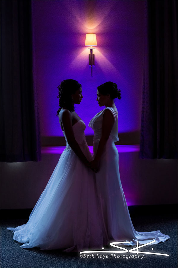 Chez Josef Tivoli Room Bridal Portraits