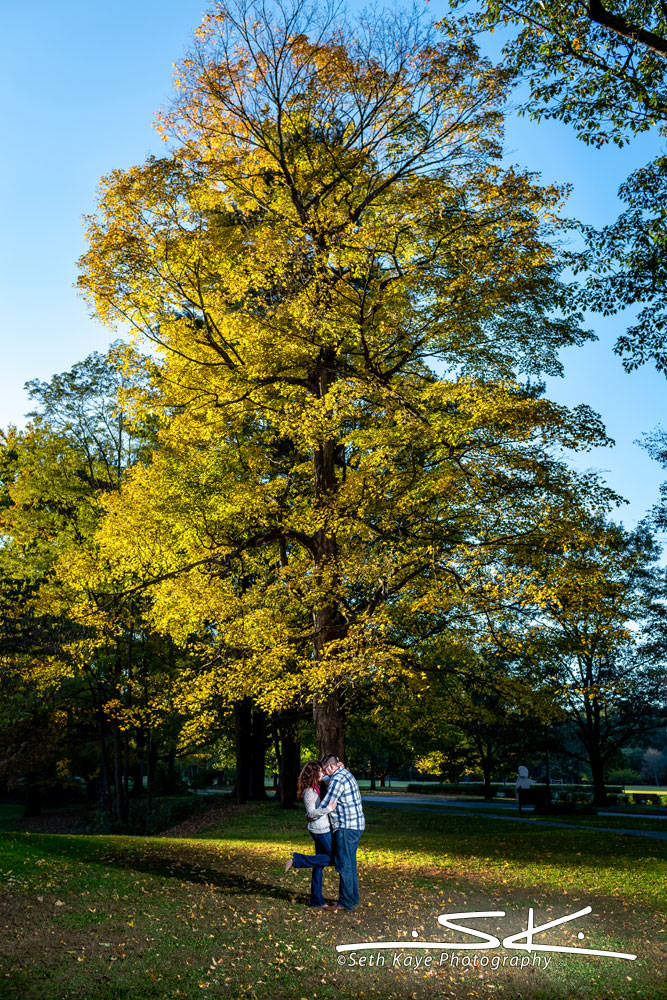 Look Park Engagement Session
