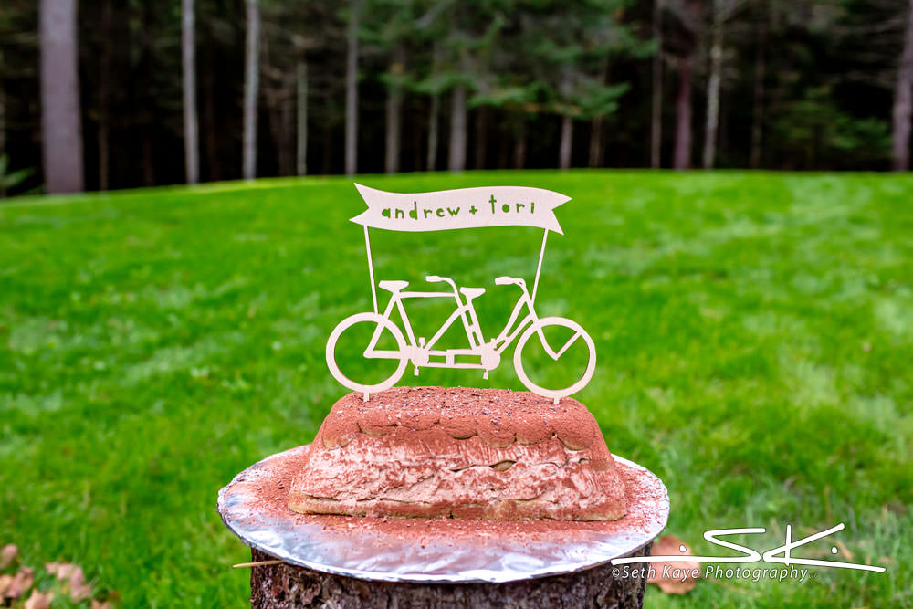 tandem bike wedding cake